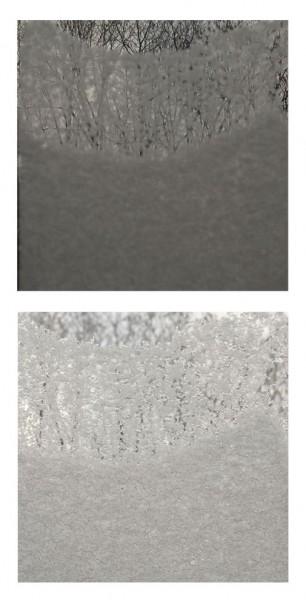 01-19-09_9.32am-h diptych, digital print, © 2011 Paul Pinkman
