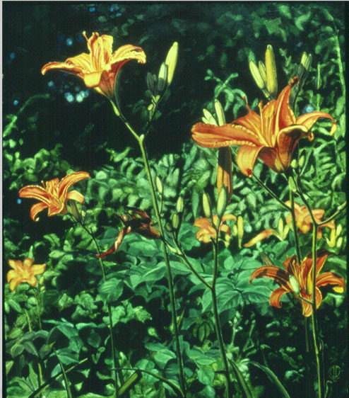 Daylillies, Oil on canvas, 1984