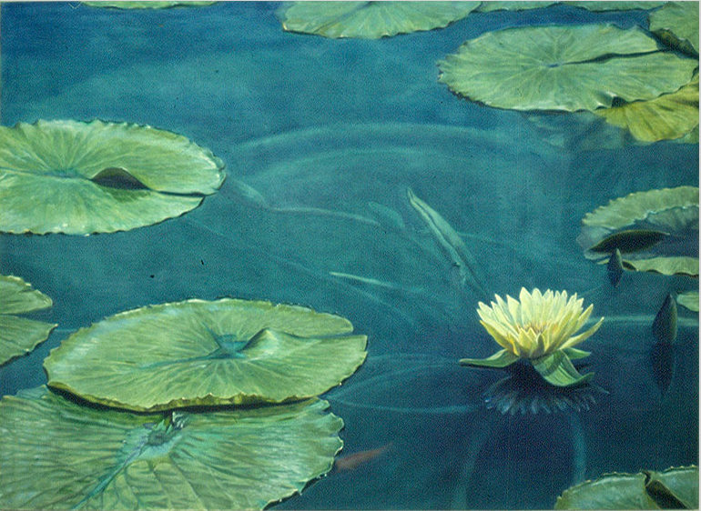 "Waterlilly, Oil on canvas, 1987, 48""h x 78""w"