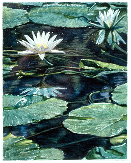 Waterlilly, 1987, watercolor on paper
