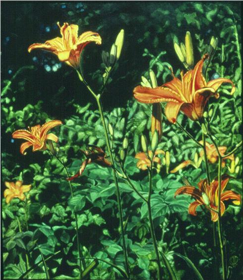 04-daylillies