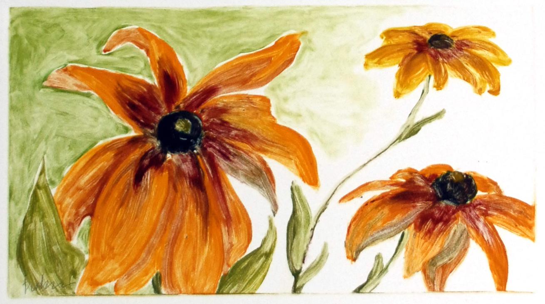 glorioso-daisies