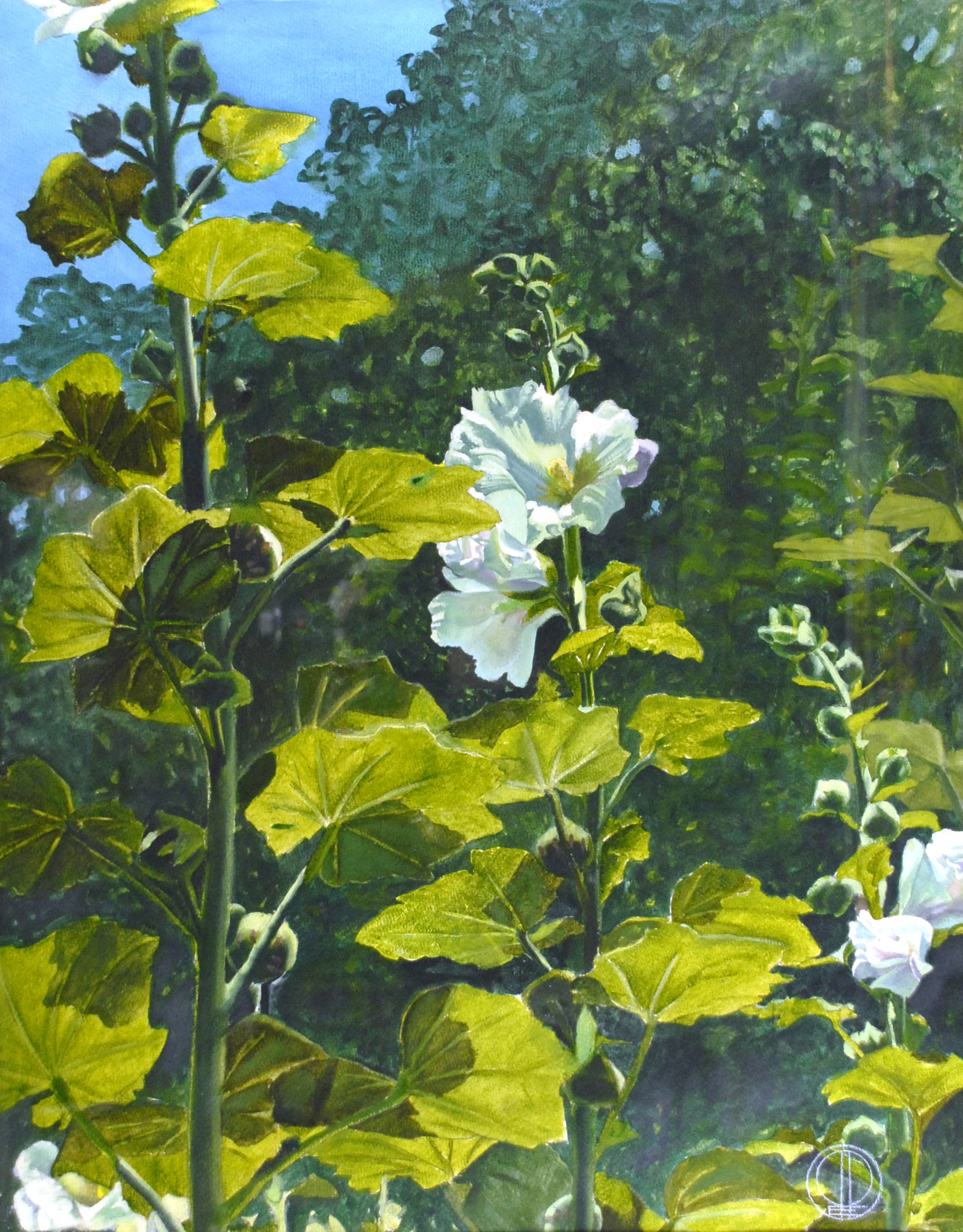 Hollyhocks, 1985, Oil on paper.